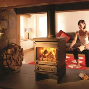 Woodwarm Fire view Double Sided from Hemsworth Fireplaces